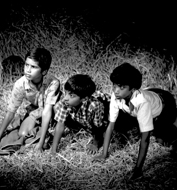 Dangeyada Makkalu (Diler Bachche) – Brave Kids